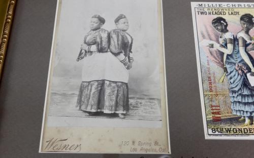 Framed cabinet photo and Victorian trade card of Conjoined twins sideshow performers Millie Chirstine McKoy the two headed nightingale black Americana for sale